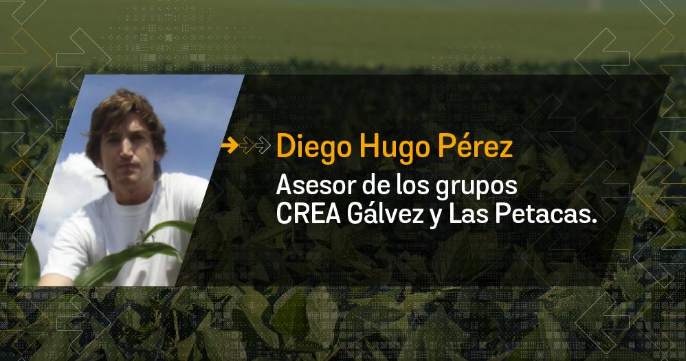Perez 998x526px